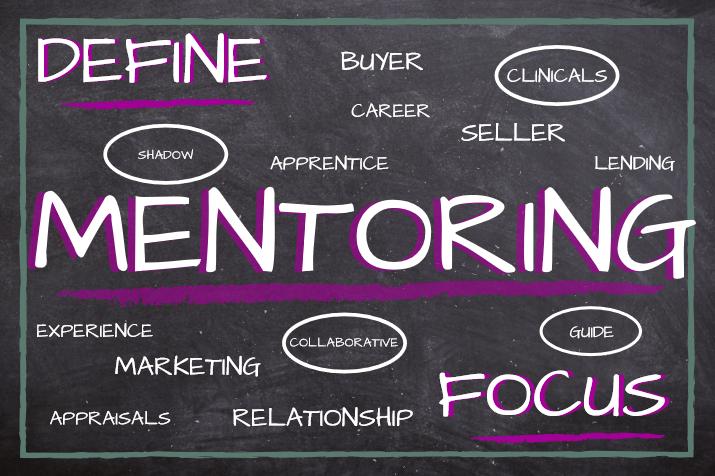 Define Mentoring